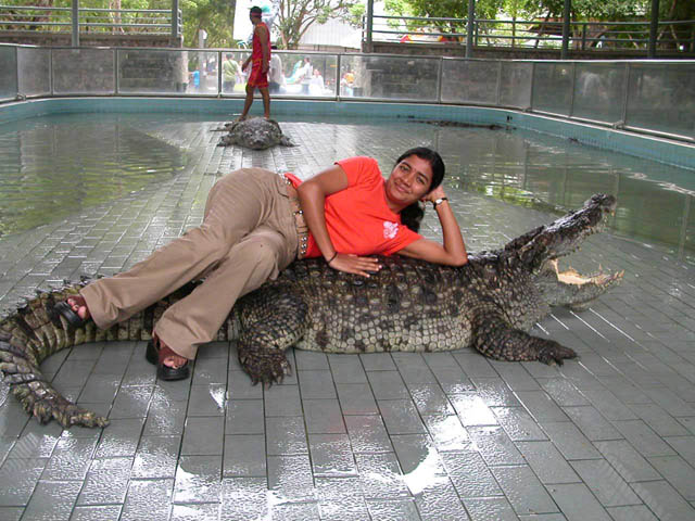 Croc around the clock - The missing link in Ram-Sethu