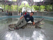 Crocodile Farm in Pattaya thailand
